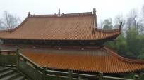 yuelu mountain (5)